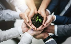 Transition to low-carbon economy could benefit small caps, says Investec
