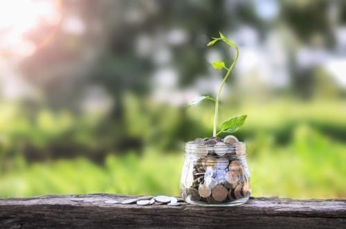 Investors allocating more of portfolios to ESG investment