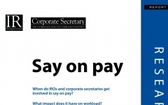 Say on Pay research report