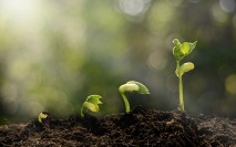 Why sustainability reporting needs governance perspective