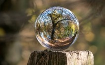 Greater collaboration needed on ESG, experts say